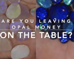 Are you leaving Opal Money on the Table?