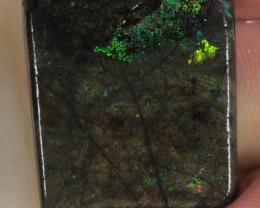 #8 Beginner Andamooka Matrix Opal [29757]