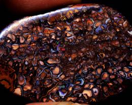 76.60 cts Australian Koroit Opal Pattern Stone  DO-701