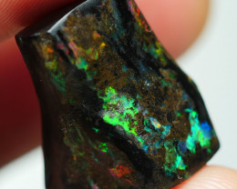 16.840CRT BEAUTY FOSSIL WOOD INDONESIA OPAL *