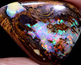 19.80 CTS   YOWAH OPAL WOOD FOSSIL  INV-1969