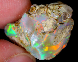 11cts Natural Ethiopian Welo Rough Opal / WR5334
