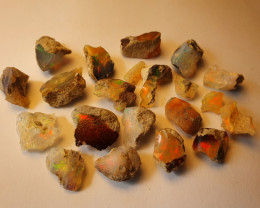 48.4ct lot Cutting Rough Noobie Welo Opal