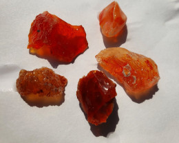 51.87ct lot Mexican Fire  Rough Opal
