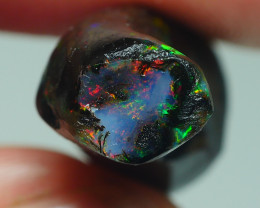 11.020CRTFOSSIL WOOD INDONESIA OPAL