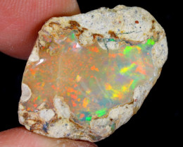 16cts Natural Ethiopian Welo Rough Opal / WR5415