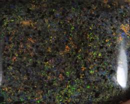 NO RESERVE!! Andamooka Matrix opal [30299] 53FROGS