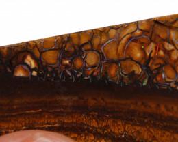 156.50 cts Australian Yowah Opal Rough  DO-1068