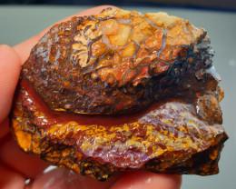 NR  205.65 Carat Natural Koroit Opal Rough Piece