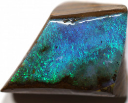 24.60 CTS BOULDER OPAL ROUGH RUBS  CS485
