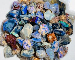 Dark Rough Nobby Opals with Colours and Potential