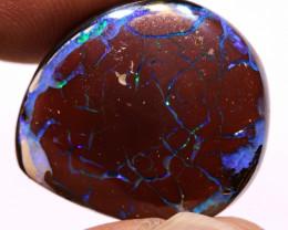 Koroit Opal Nut Double Facing  AOH-72 - downunderopals