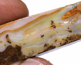42cts Boulder Opal Faced Rough  DO-1426