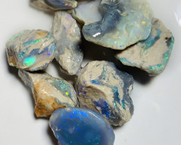 Jag Hill Nobby Opals- Bright Colourful High Potential#2486