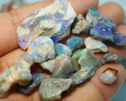 975CT QUALITY OPAL ROUGH PARCEL FROM LIGHTNING RIDGE BJ508