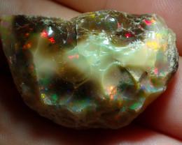 49.3ct A4 Gamble Quality Rough Ethiopian Wello Opal