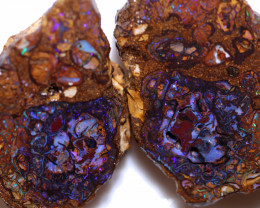247 CTS OPAL NUTS  ROUGH-SLICED OPEN   [BZ146]