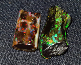 19.00 CRT 2PCS FLORAL PIN FIRE SPECIMENT INDONESIAN OPAL WOOD FOSSIL*