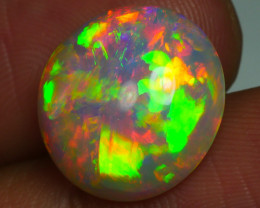5.695 CRT SUPER DELUXE 5/5 ROUND FIREWORKS PATTERN WELO OPAL