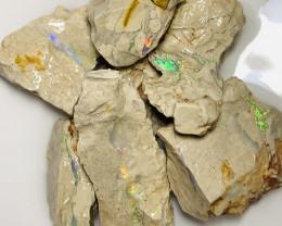 Exquisite Bright Multicolour Seam Opal Formation #221