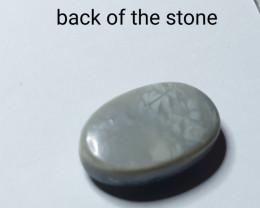 Lightning Ridge   White Solid Opal