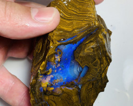 Winton Gem Boulder Opal- 1000 CTs  Rough With Stunning Blues#364