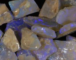 #7- White Cliffs  - Gamble Rough Opal - [31774]