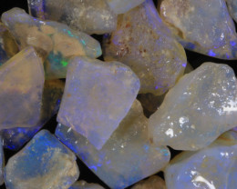 #7- White Cliffs  - Gamble Rough Opal -  [31778]