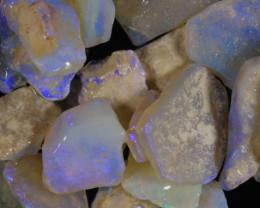 #7- White Cliffs  - Gamble Rough Opal -  [31779]
