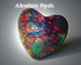 absoluteopals