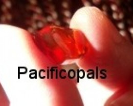 pacificopals