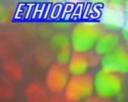 ETHIOPALS