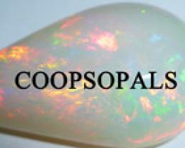 coopsopals
