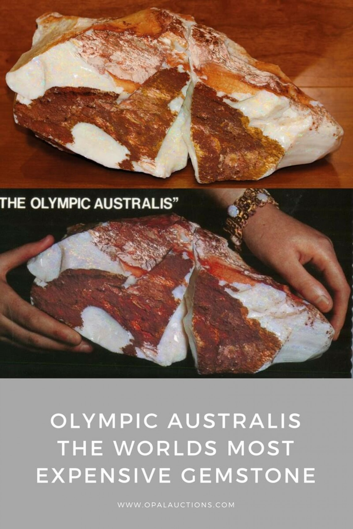 Olympic Australis  The Worlds Most Famous Opal