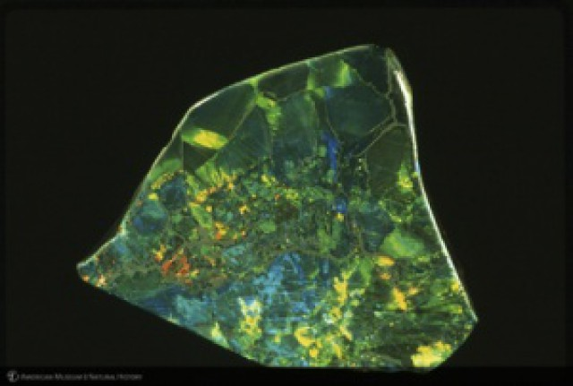 famous opals - The Black Prince Opal