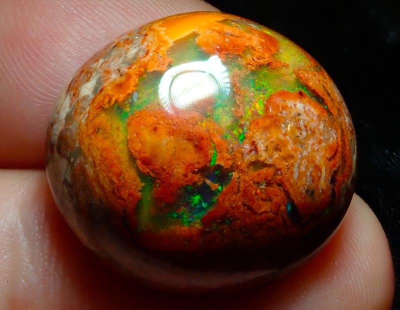 $1 NR Auction 26ct Mexican Matrix Cantera Multicoloured Fire Opal