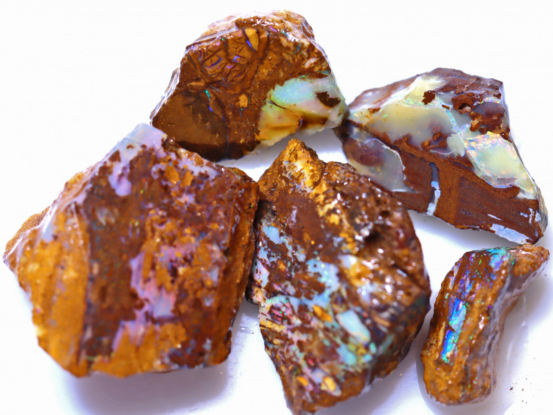 61.61 Carats Wood Fossil Opal Rough Parcel ANO-1735