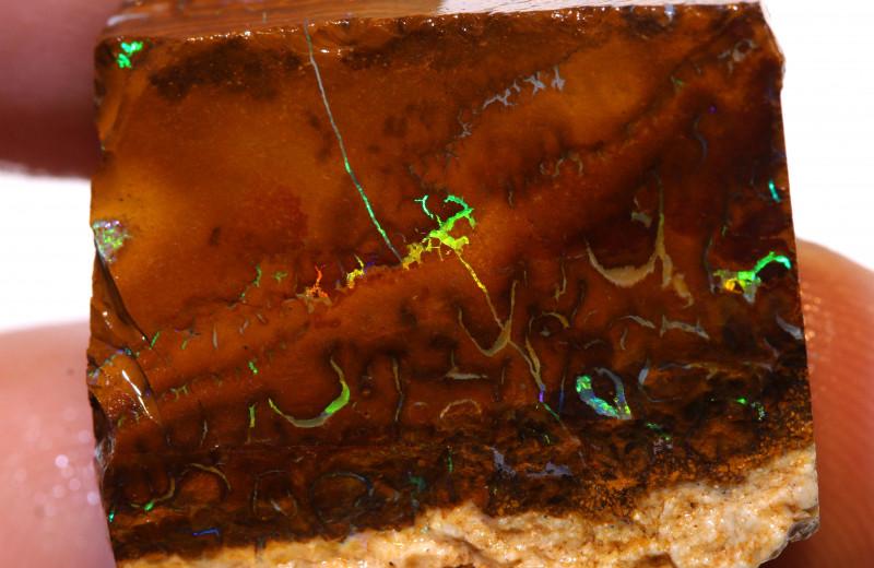 Yowah Opal Rough  64cts DO-1784 - downunderopals
