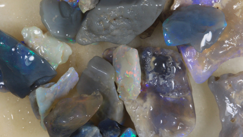 NO RESERVE!! #8  -Beginners Rough Opal -L Ridge [34803] 53FROGS