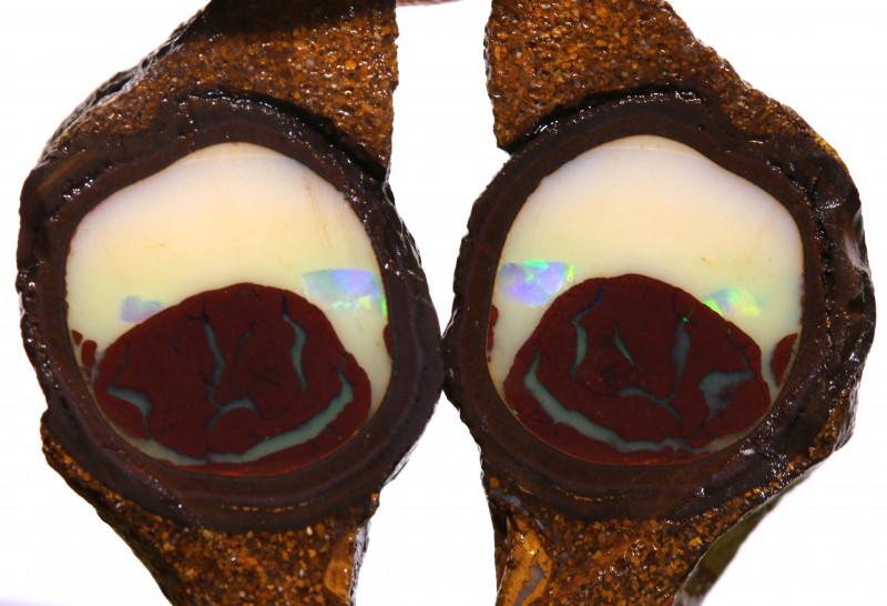 79cts Yowah Opal Center Nut Rubs DT-A5037 - dreamtimeopals