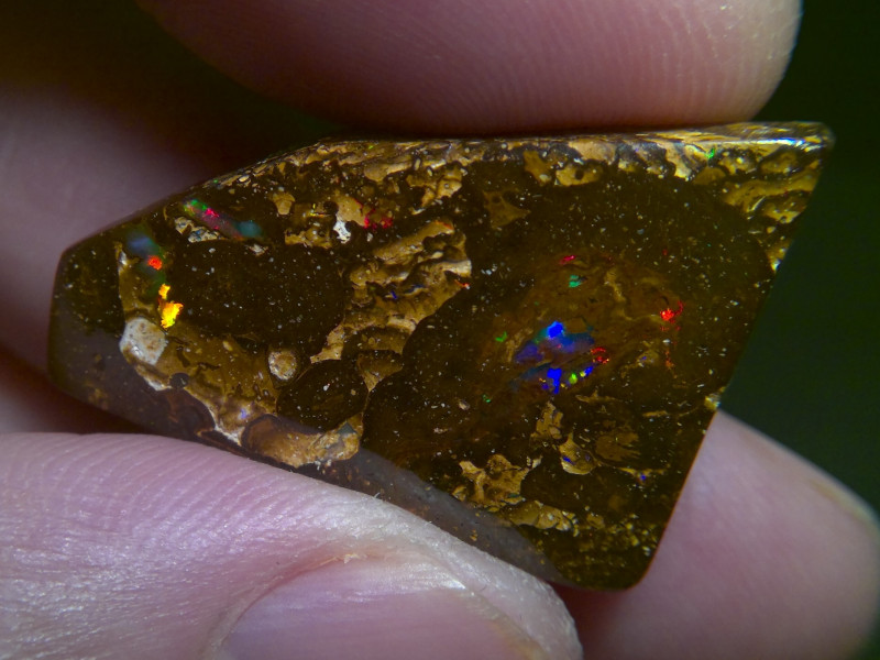 40cts Boulder opal with multiple electric fire, No Reserve