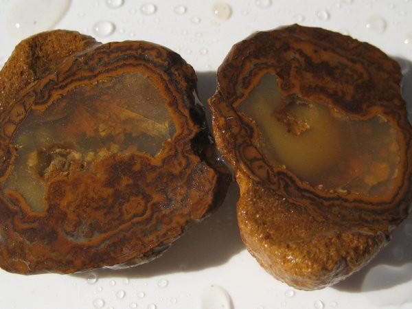 YOWAH-ROUGH+66.90ct Yowah Nut  - Speciemen -