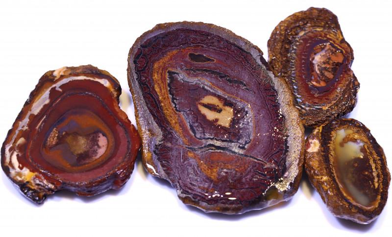 461 CTS YOWAH OPAL SLICED NUTS CRO-67