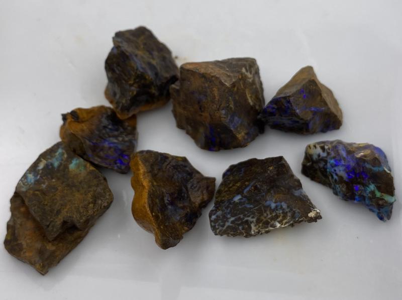32pcs 460cts Boulder Opal Rough by OPAL TERRITORY
