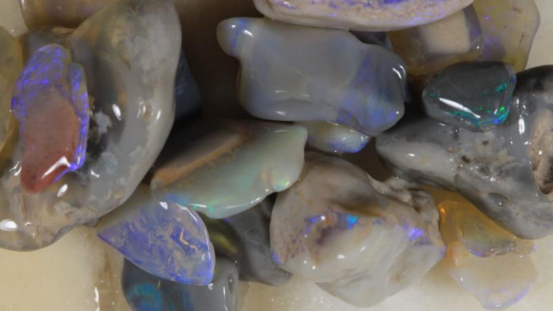 NO RESERVE!! #8  -Beginners Rough Opal -Lightning Ridge [35526] 53FROGS