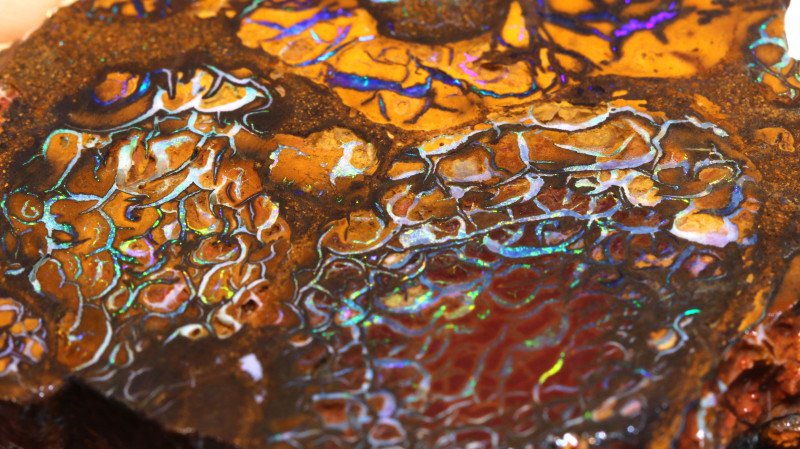 Koroit Boulder Opal Faced Rough DO-2616  - downunderopals