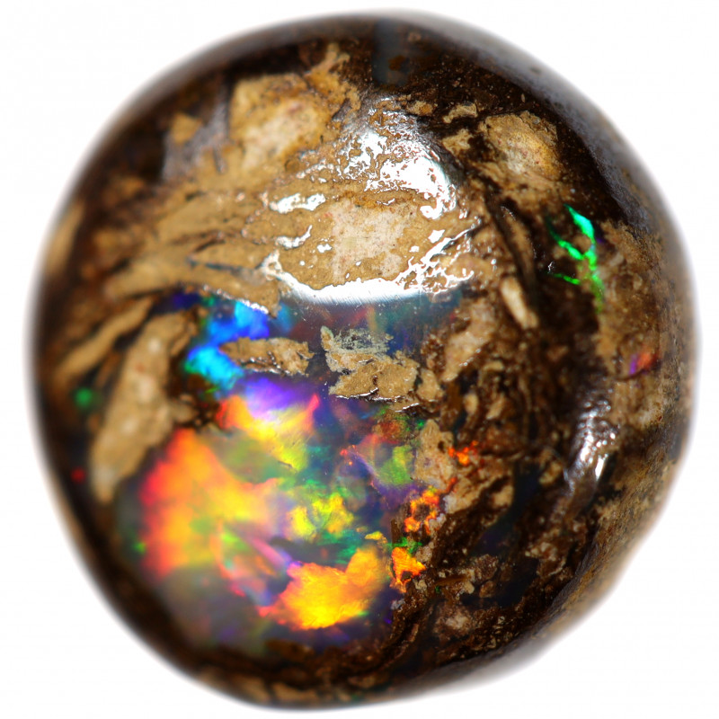 3.9 CTS BOULDER WOOD FOSSIL PIPE OPAL WINTON CS886