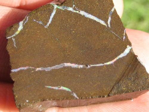 YOWAH-ROUGH> 66.20ct Rough Yowah Opal - ready to cut :-)