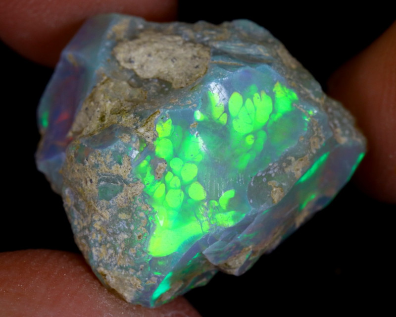 13cts Natural Ethiopian Welo Rough Opal / WR9513