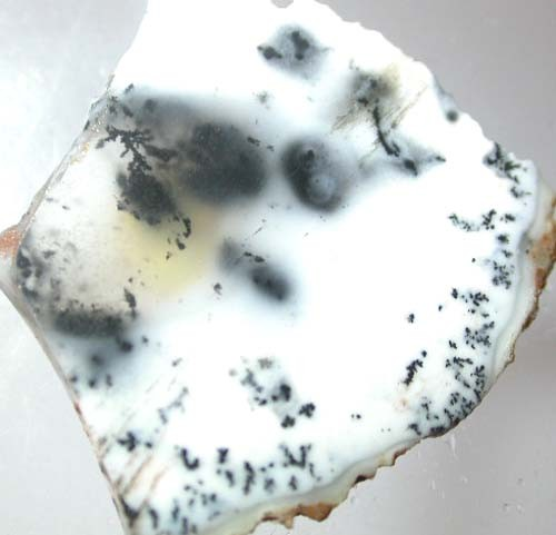 DENDRITIC OPAL ROUGH  [S6 38]